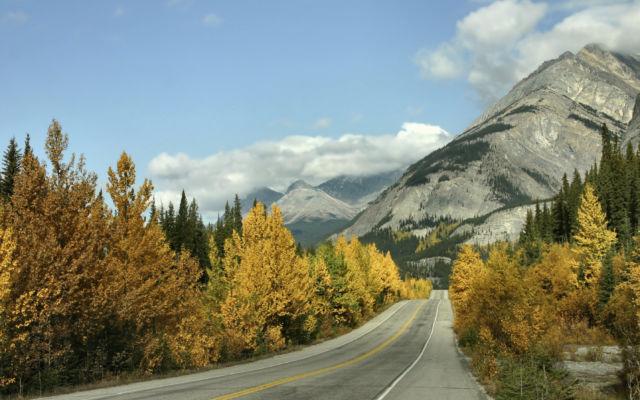 Scenic Fall Drive