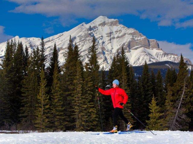 Cross Country Ski Main